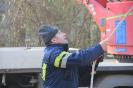 Arbeitseinsatz rund um das Vereinsheim am 7. Februar 2015_11